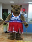 Brown bear sports mascot costume
